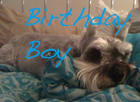Birthdayboy